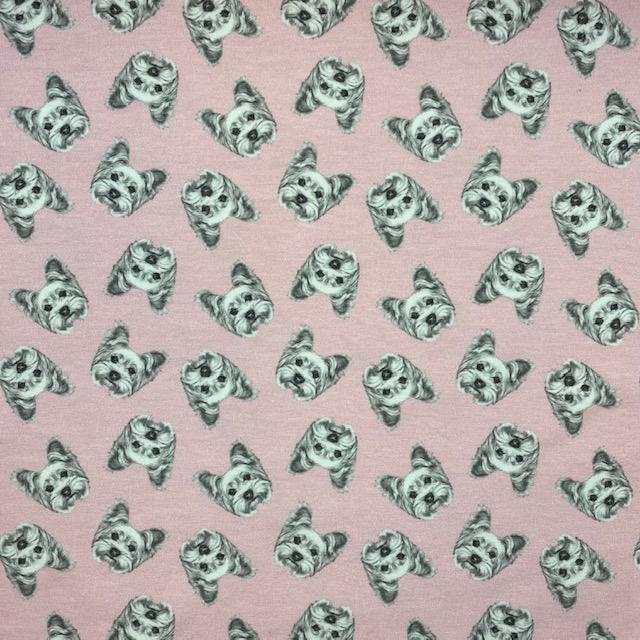 Baumwolljersey, Dogs rose. Art. 50003-011